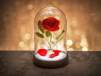 Skjønnheten og Udyret-lampe