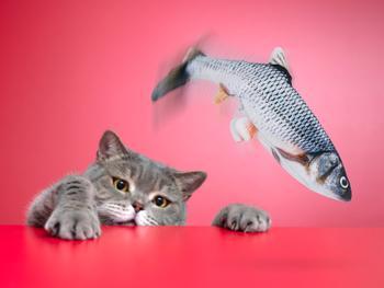 Spralla sprellende fisk katteleke