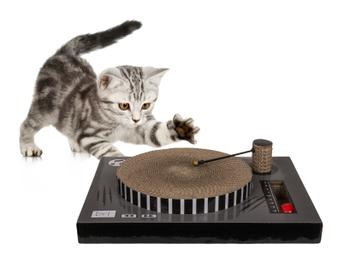 Platespiller-klorebrett til katt