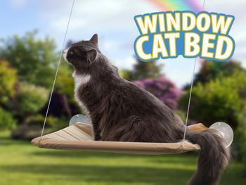 Katteseng til vinduet